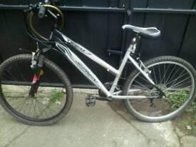 Tiger bike CHEAP!
