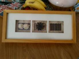 Picture Natural Boxed Art