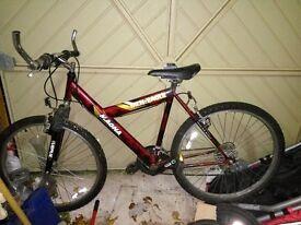 Magna Mountain eagle mountain bike