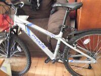 immaculate condition female mountain bike Apollo