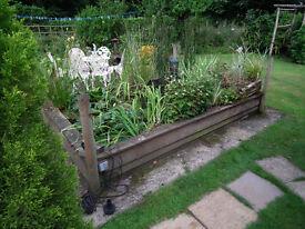 Contents of garden pond