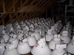 Lot d'environ 125 lumière d'entrepôt / Warehouse lamps
