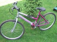 "Falcon ""Jubilee"" Ladies/Girls mountain bike 18"" frame 26"" wheels"