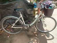 Women's 18 inch bike with basket