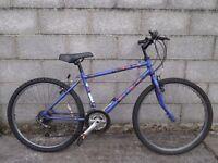 mens bike 26'' raleigh