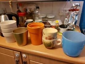 Plant pots bundle