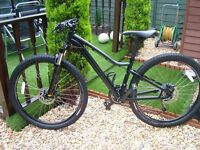 ladies specialized jynx comp 2017 mountain bike in excellent condition