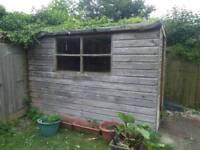 Free shed **still available**