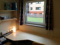 Room for Rent in Buchanan View Halls