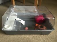 Large Hamster/Small Animal Cage