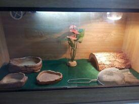 3 foot vivarium