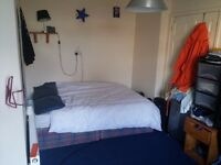 Double room in Bedminster BS3 3BU from 1st march available 400 pounds (no bills included)