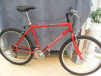 ADULTS GOOD QUALITY RALEIGH FIREFLY MOUNTAIN BIKE (IN VGC)
