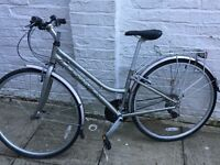 """Woman's Bike. Ridgeback Speed. Open Frame !5"""""""