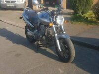 2003, Honda Hornet CB900 - Reluctant Sale of a truly wonderful bike