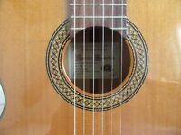 Vicente Sanchis Flamenco guitar