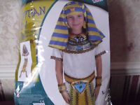 Boys Egyptian Costume age 8-10 years