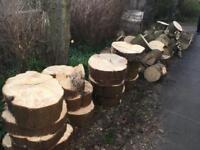 Free Firewood for Collection in Mount Vernon