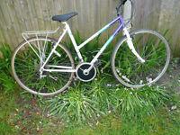 raleigh pioneer bicycle