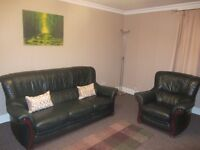 Three seater sofa and single chair - Leather, Dark Green