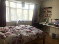 Large room to rent in shared student house available NOW!