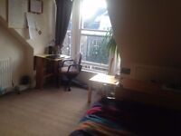 Sunny room for rent in colonies flat