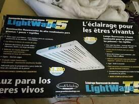 T5 maxi light 8 bulb