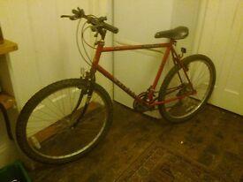 Raleigh Jackal mountain bike