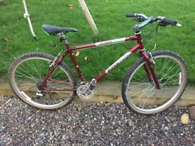 Lovely Ridgeback Mountain Bike