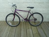 21 Gear Adults Holdsworth Bike / Bicycle