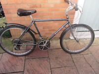 mens vintage raleigh rocky11 mountain bike with lock and lights £49.00