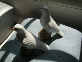 PAIR OF WHITE CHINA BIRDS
