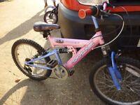 20 inch wheel top of the range skyline zoom mountain bike