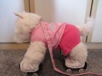 Build a bear dog for sale- including santa outfit, roller skates and bed