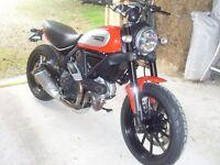 Ducati Scrambler Icon - as New