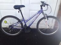 Girls Mountain Bike- Appollo