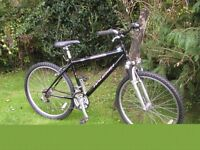 raleigh stonefly 16.5 in frame,front suspension,new tyres,immaculate
