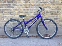 ridgeback mx24 bike