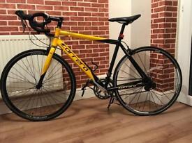 CARRERA TDF ( Limited Addition ) Road Race Bike