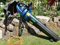 Challenge Xtreme leaf blower / leaf vacuum