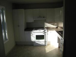 Affordable  Townhouse for Rent – Special needs Edmonton Edmonton Area image 2