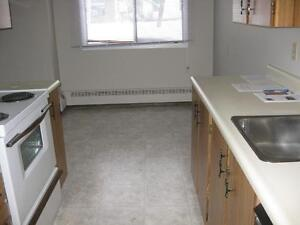 *INCENTIVES*Bachelor w/ Patio in Spotless Central Adult Bldg ~33 Edmonton Edmonton Area image 4