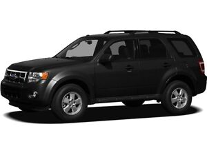 2009 Ford Escape XLT Automatic ACCIDENT FREE, LOCAL VEHICLE