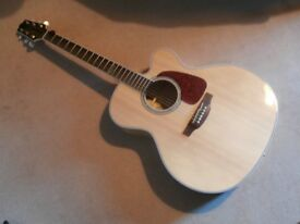 Takamine GJ72-NAT Jumbo guitar & quality hard case.