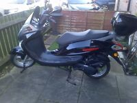 125cc moped direct bike