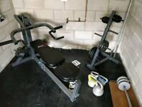 Lever multi bench and other Gym equipment