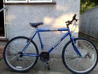 DUNLOP KING Mens Road Bike - Pearlized Blue 21 inch £120