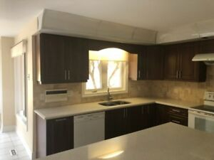 Full kitchen cabinets with quartz counter top