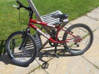 Raleigh Ninja warrior mountain bike