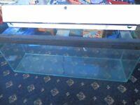 FISH TANK CLEAR SEAL 170L